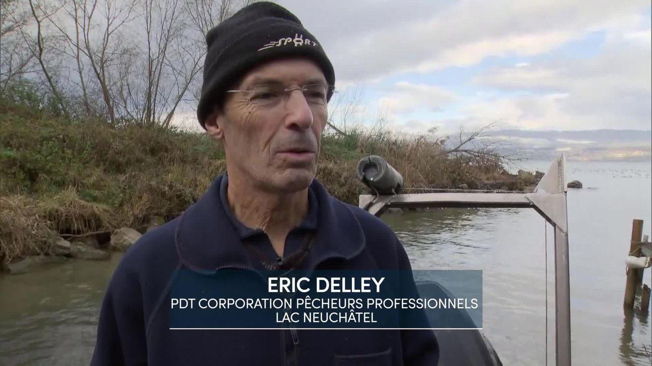 Entretien avec Eric Delley, Président de la corporation des pêcheurs professionnels du lac de Neuchâtel [RTS]