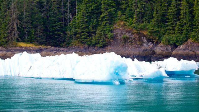 Le dossier sur les Icebergs de RTS Découverte. [© Michael Ireland - Fotolia]