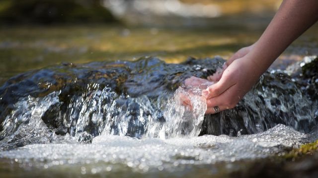 Chlorothalonil: interdit mais plus que jamais problématique pour les distributeurs d'eau potable. [HappyLenses - Depositphotos]