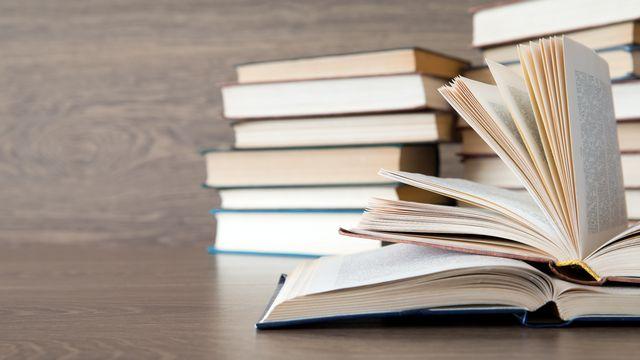 Le Prix du public distingue un roman ou des nouvelles d'un(e) écrivain suisse ou étranger résidant en Suisse. [@depositphotos.com]