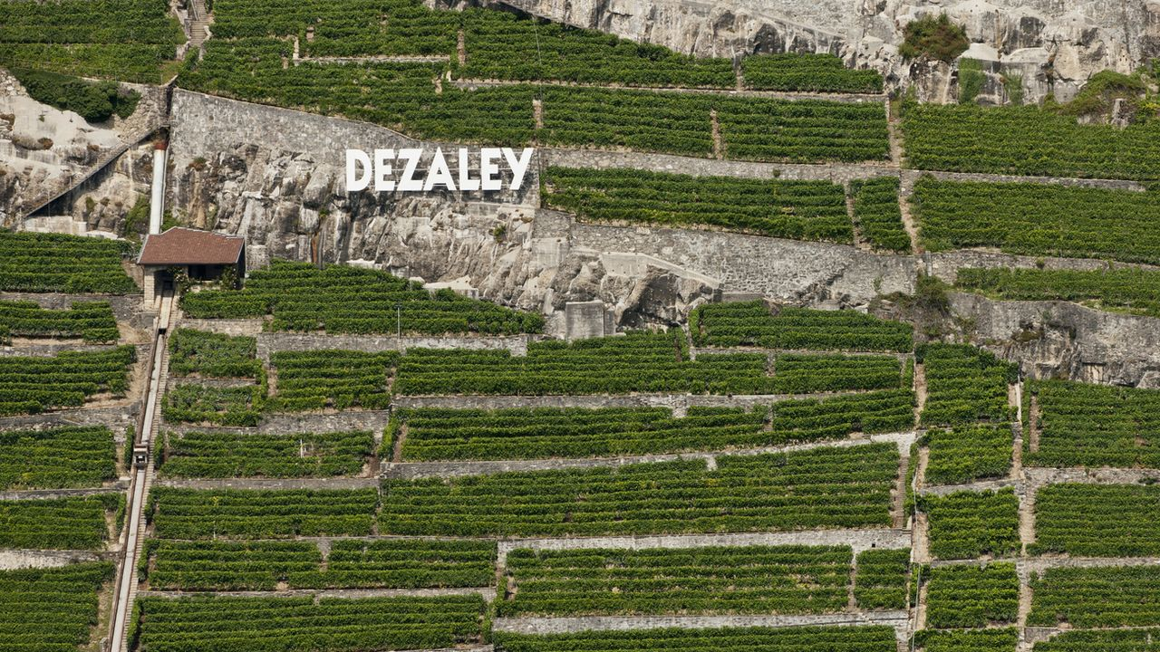 Un vignoble unique du Lavaux serait menacé par un projet immobilier. [Alessandro Della Bella - Keystone]