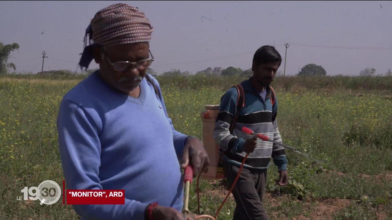 La vente de pesticides jugés dangereux dénoncée par Public Eye et Greenpeace. [RTS]
