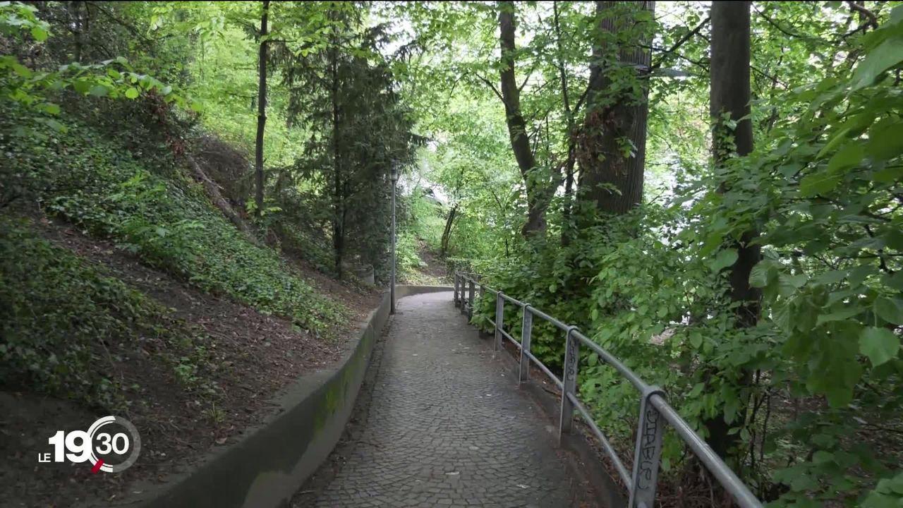 Lausanne: Le tram sur rail et la forêt sauvée. [RTS]