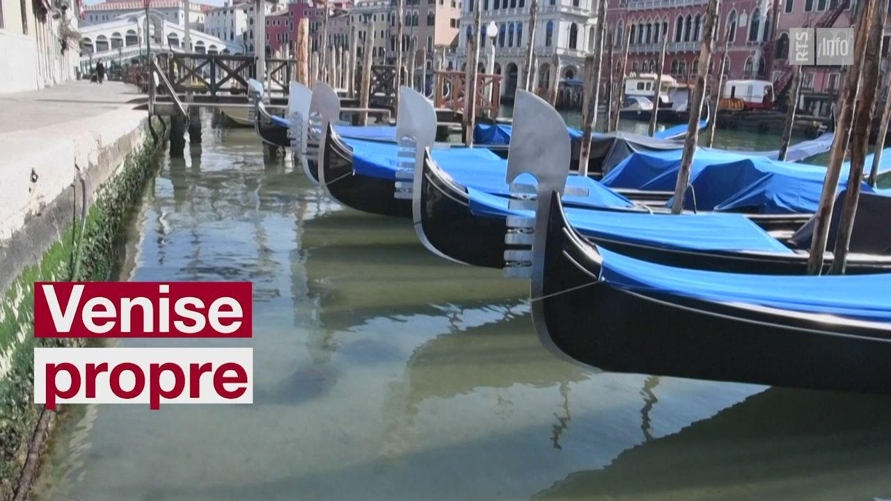 A Venise, les canaux sont limpides [RTS]