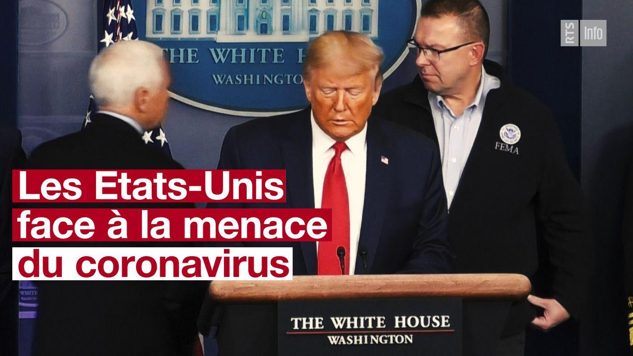 Donald Trump vignette [RTS]