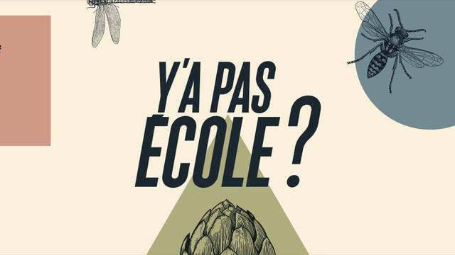 """Le logo de """"Y a pas école ?"""" [Florian Tranchet - RTS Découverte]"""