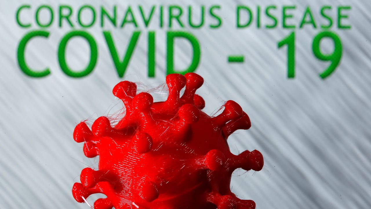 Illustration en 3D du coronavirus. [Dado Ruvic - Reuters]