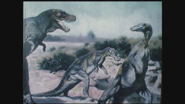 Les animaux préhistoriques [RTS]