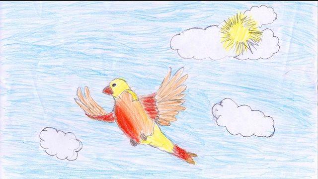"""""""Regarder les oiseaux"""" dessin réalisé par Kelian. [Kelian - RTS]"""