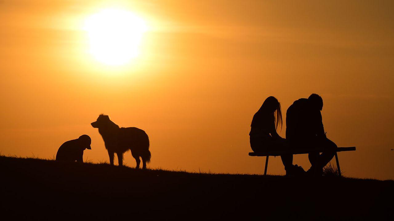 Les températures les plus au-dessus des moyennes ont été relevées sur les régions eurasiatiques. [Artur Widak - NurPhoto/AFP]