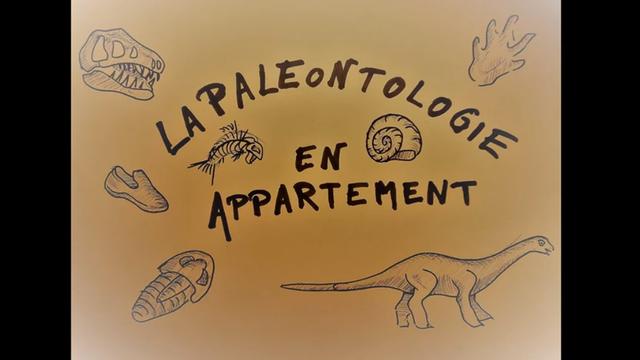 Paléontologie en appartement [Muséum Genève - Muséum Genève]