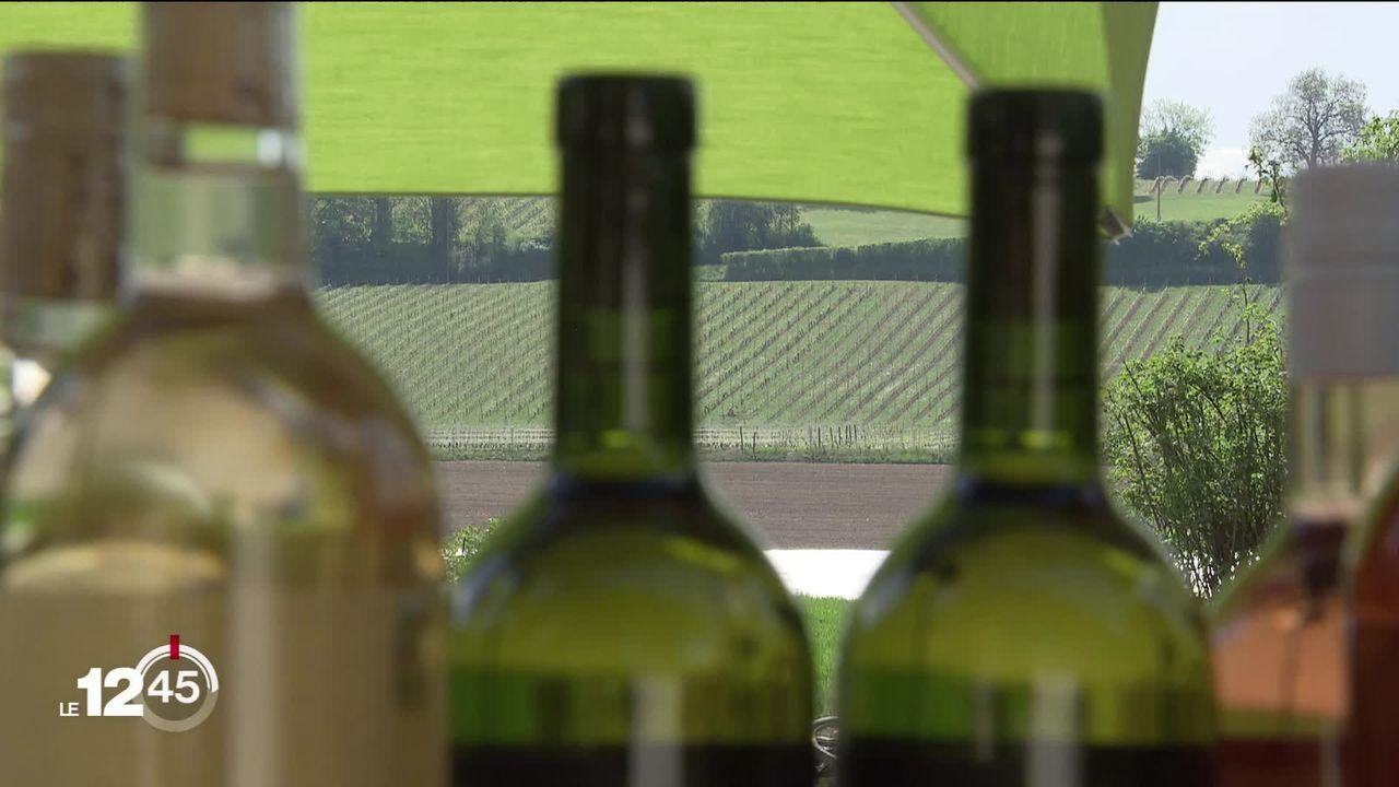 La consommation de vin et bière indigènes est en augmentation en Suisse. [RTS]