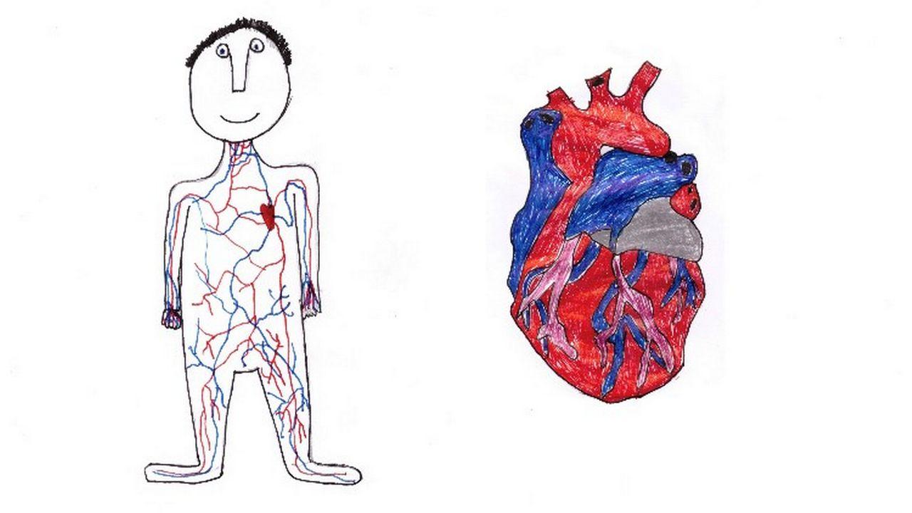 """""""Pourquoi y a-t-il du sang dans mon corps?"""" Dessin réalisé par Ivo. [Ivo - RTS]"""