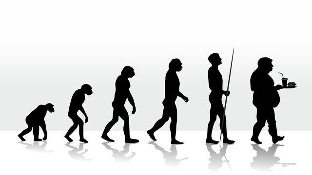 L'alimentation évolue et entraine des modifications génétiques. fffranzzz Depositphotos [fffranzzz - Depositphotos]