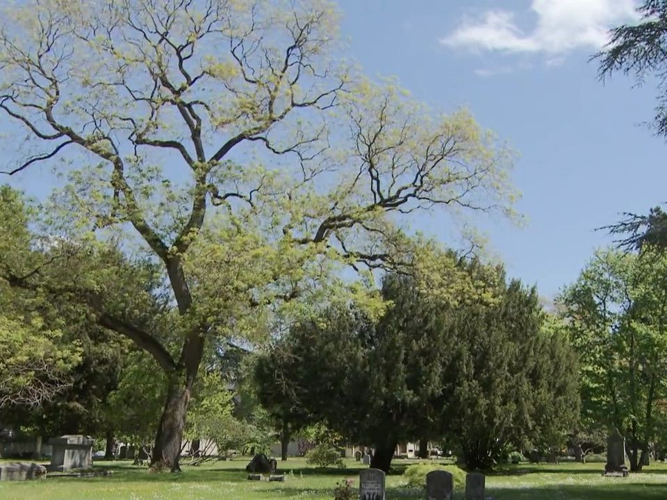 Grisélidis Real au cimetière des rois [RTS]