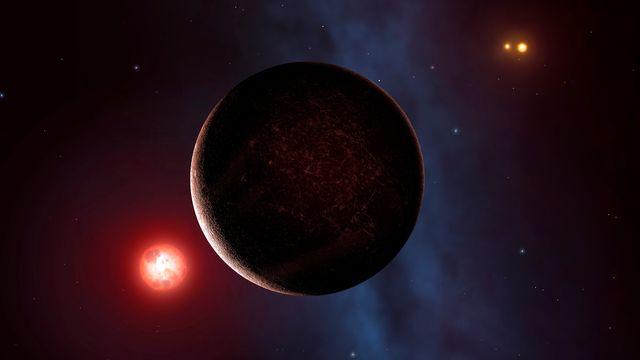 Vue d'artiste de Proxima b, l'exoplanète connue la plus proche de la Terre. [Mark Garlick - Science Photo Library/MGA/AFP]