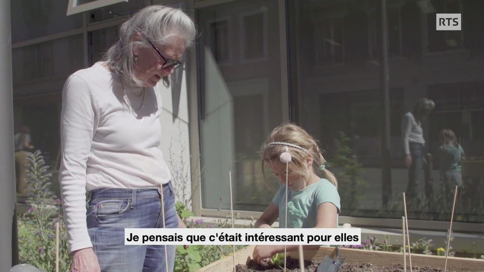 Mission B vous présente le projet Comm'une Allée Verte qui vise à verdir les rues de Lausanne [RTS]