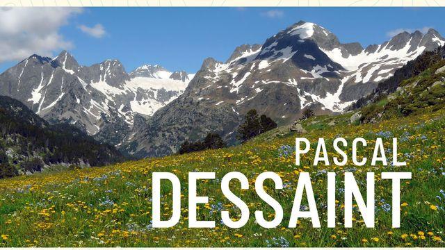 """La couverture du livre """"Vers la beauté toujours !"""" de Pascal Dessaint. [Editions Salamandre.]"""