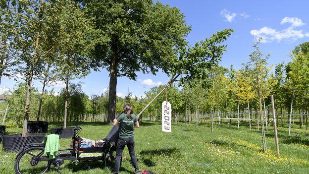 Économie : Le Revenu de Transition Ecologique, un concept qui fait son chemin •