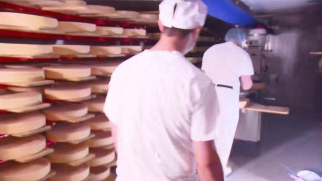 Pleins feux sur les fromages jurassiens [RTS]