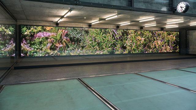 """Cecilia Bengolea, """"TRIPTYK"""", une vidéo à découvrir sur le parcours du Léman Express, dans la gare de Champel. [Serge Frühauf]"""