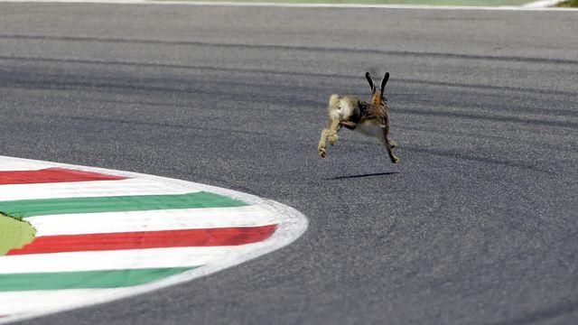 Le circuit du Mugello accueillera la Formule 1 le 13 septembre à l'occasion du Grand Prix de Toscane. [Gregorio Borgia - Keystone]