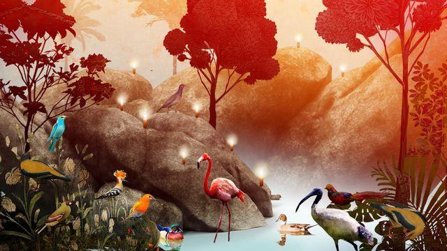 """L'affiche du spectacle """"Le voyage des oiseaux"""". [Théâtre de l'Orangerie]"""