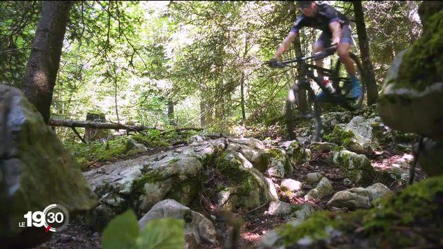 Les fans de VTT construisent des pistes dans les forêts. De mauvaises pratiques que le Jura veut stopper [RTS]
