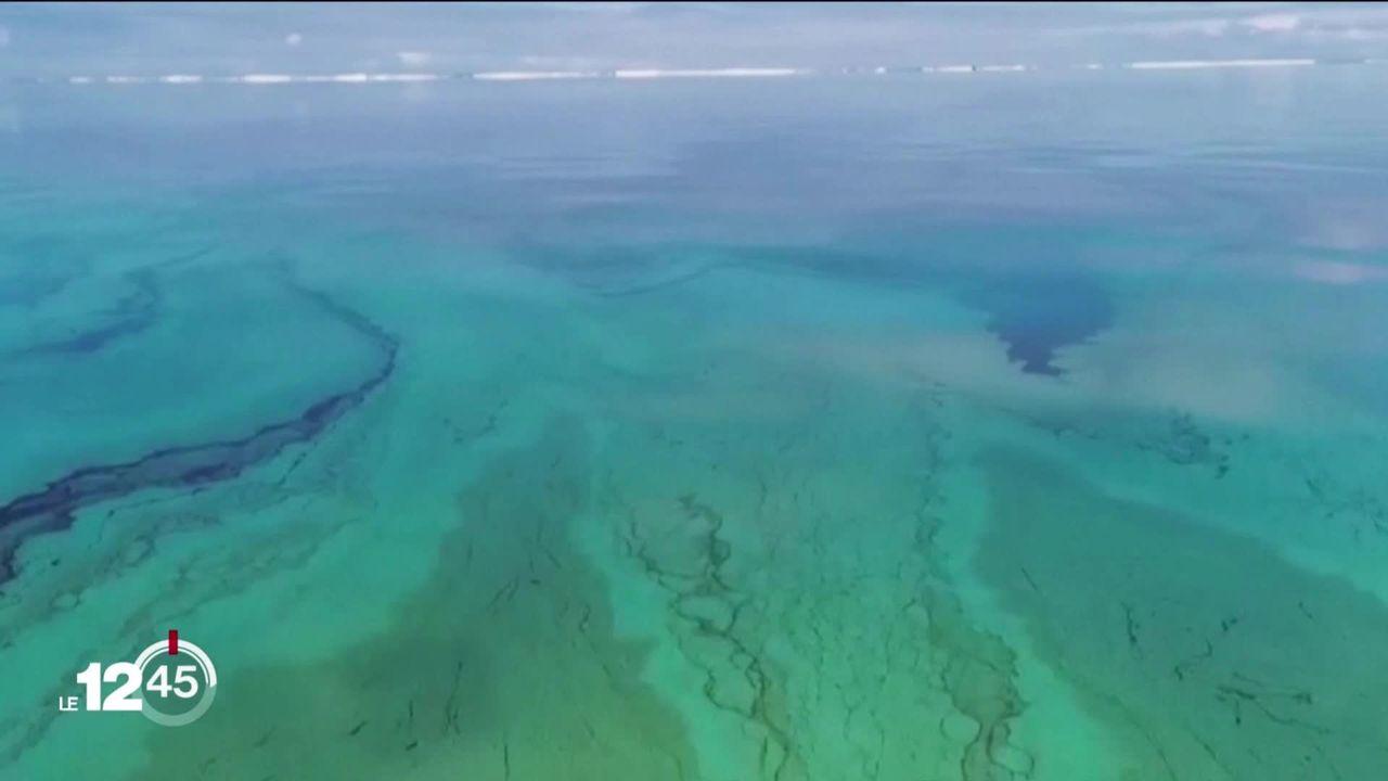 Des hydrocarbures s'écoulent d'un vraquier échoué au large de l'île Maurice [RTS]