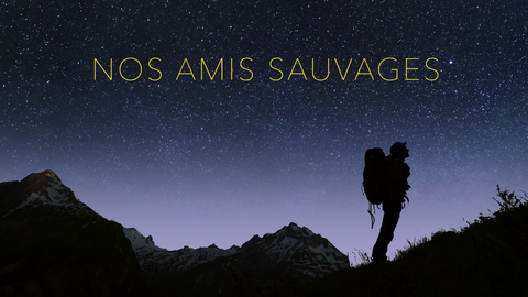 Nos amis sauvages