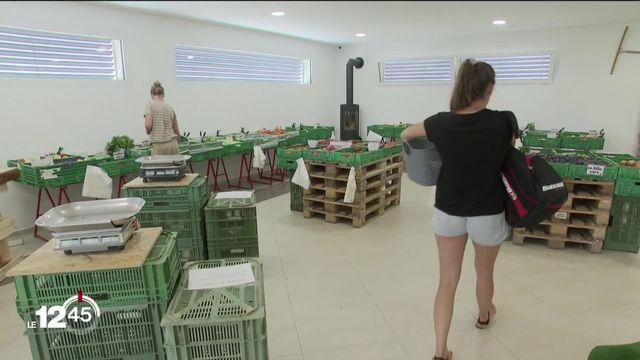 Les consommateurs infidèles: les ventes directes à la ferme sont en recul par rapport à la période du confinement. [RTS]