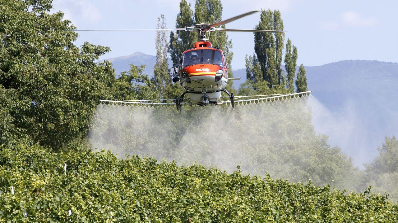 Sulfatage par hélicoptère dans le canton de Genève. Salvatore Di Nolfi Keystone [Salvatore Di Nolfi - Keystone]