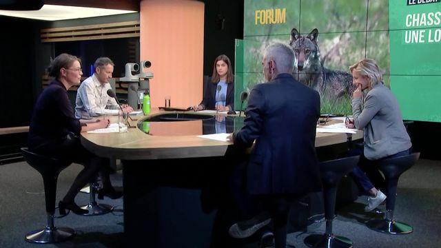 Le Grand débat - La nouvelle Loi sur la chasse [RTS]
