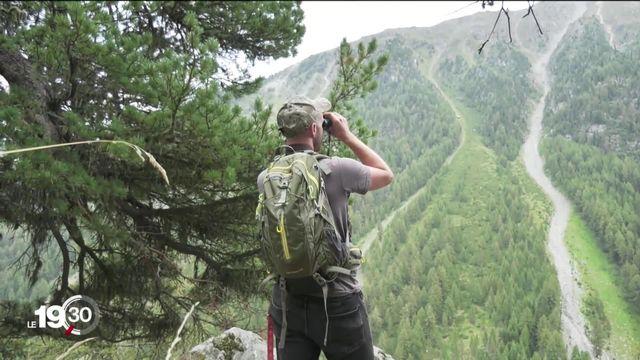 Loi sur la chasse, portraits croisés. Deux amoureux de la nature, deux chasseurs et deux avis différents. [RTS]