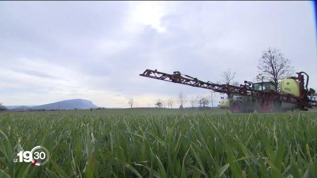 Deux initiatives populaires réclament la suppression des pesticides. -Le Conseil des Etats plaide pour limiter leur risque [RTS]