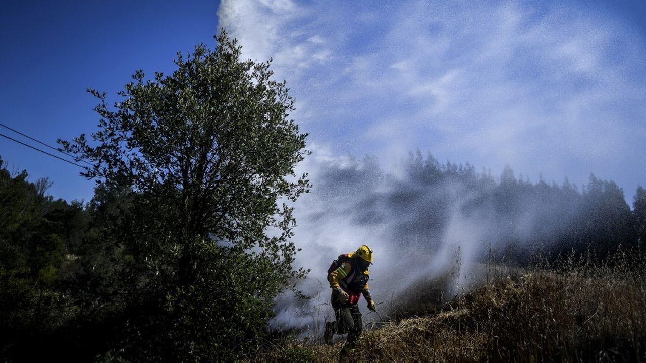 Des incendies frappent régulièrement le pourtour méditerranéen, comme ici en août 2019 au Portugal. [Patricia de Mela Moreira - AFP]