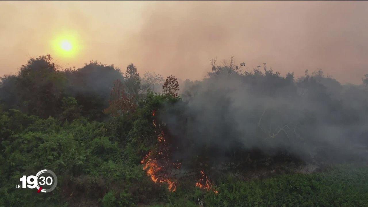 D'énormes incendies consument l'Amazonie [RTS]