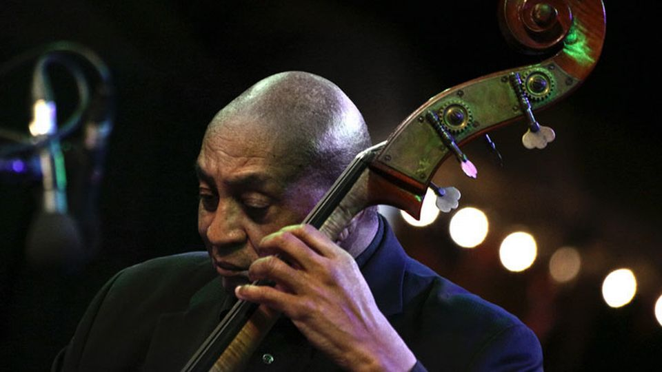 Reggie Johnson (2014). [Eifert János - WikiCommons CC-BY-SA 3.0]