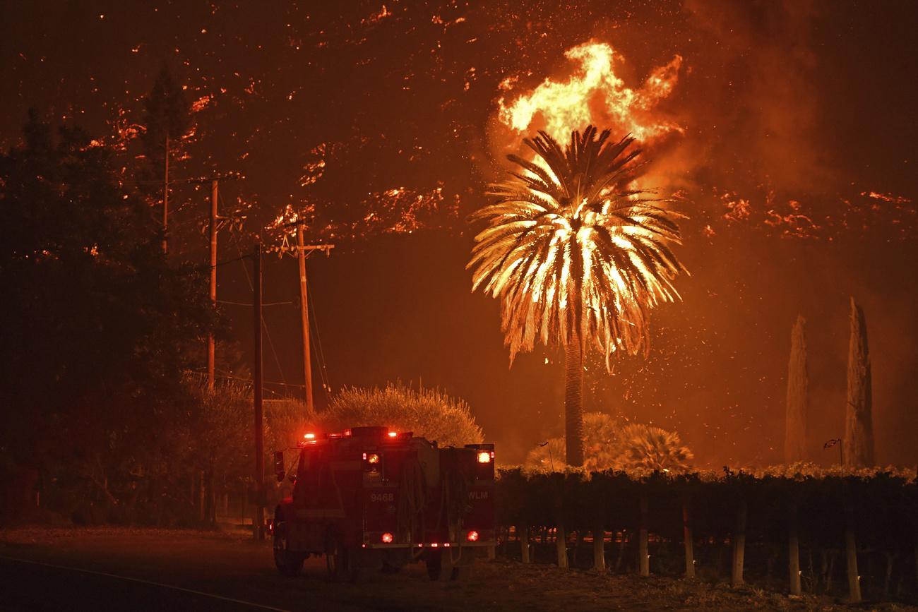 La production californienne de vin menacée par les incendies