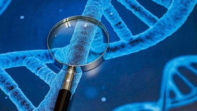 L'histoire peut se lire dans l'ADN. yskandag Depositphtos [yskandag - Depositphotos]