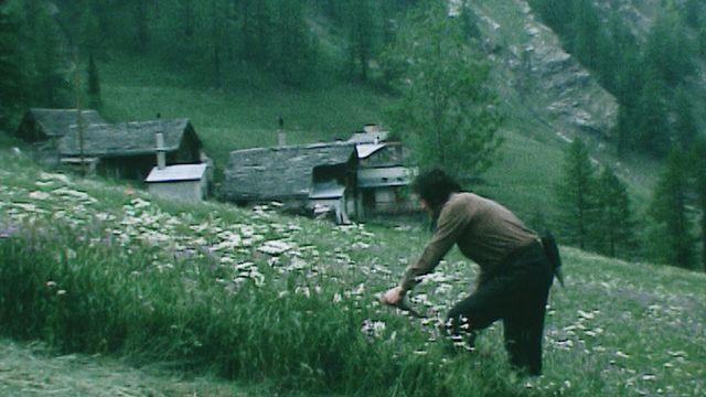 Des jeunes dans la Vallée du Simplon [RTS]
