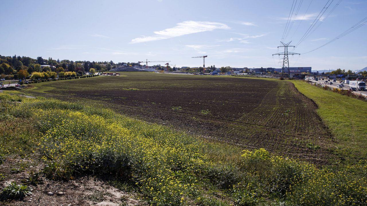 Les terrains agricoles qui devaient accueillir le projet Pré-du-Stand au Grand-Saconnex (GE). [Salvatore Di Nolfi - Keystone]