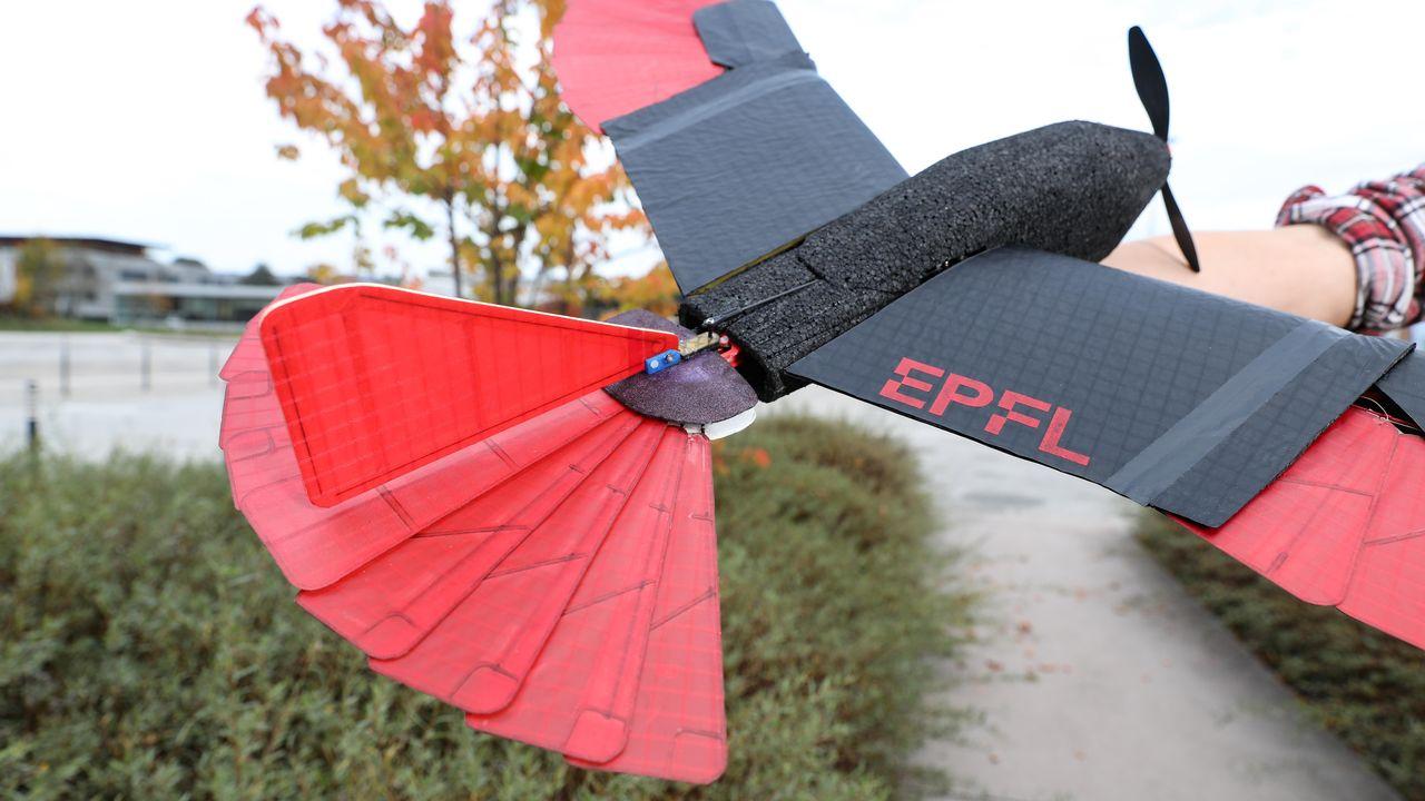 Le drone créé par l'équipe de l'EPFL. [Alain Herzog - EPFL]