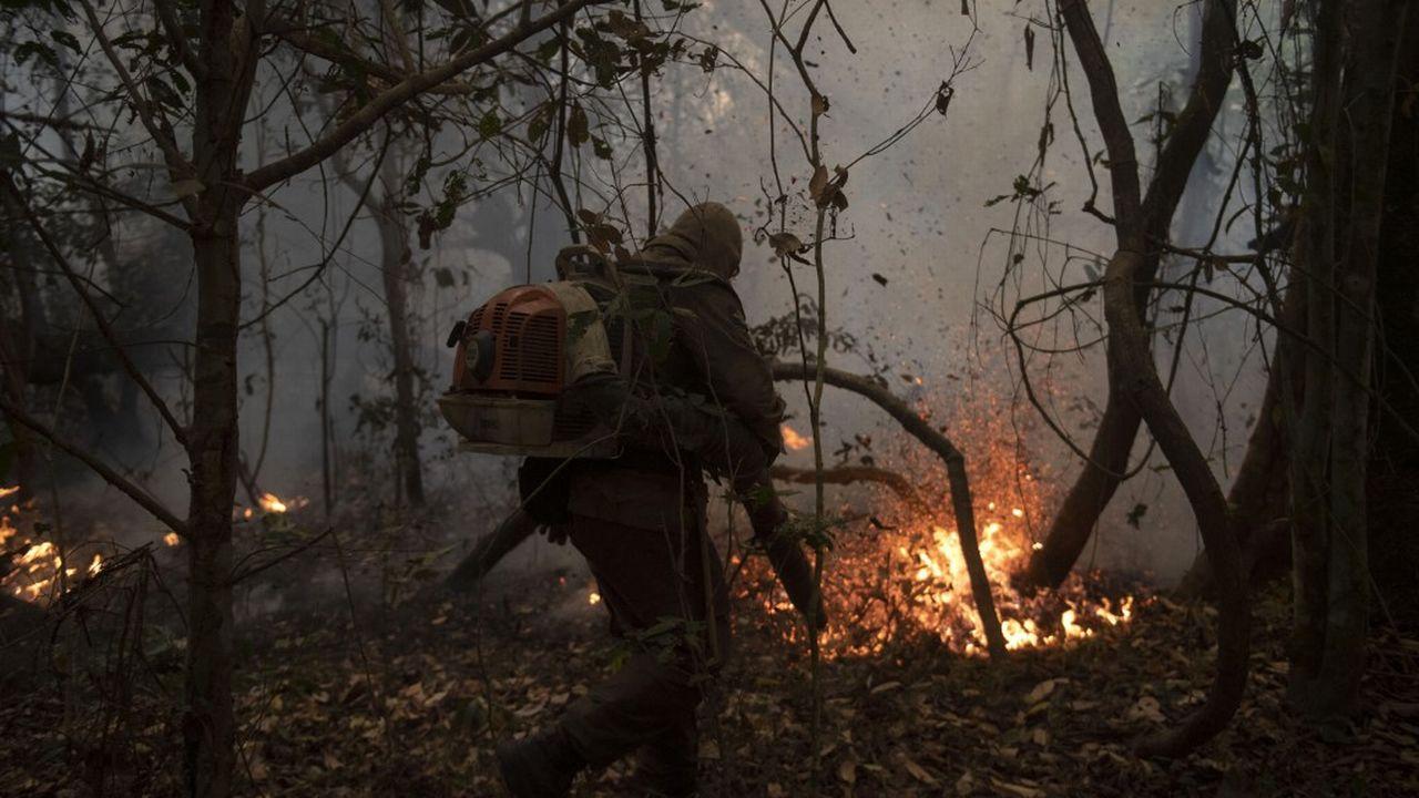 Les incendies continuent à ravager l'Amazonie et le Pantanal. [Mauro Pimentel - AFP]