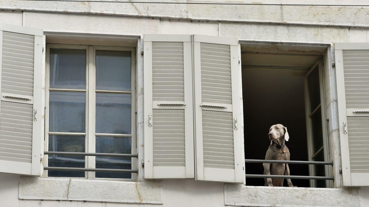 Pour lutter contre la présence du coronavirus à l'intérieur, il est important d'aérer les locaux en ouvrant les fenêtres. [Martial Trezzini - KEYSTONE]