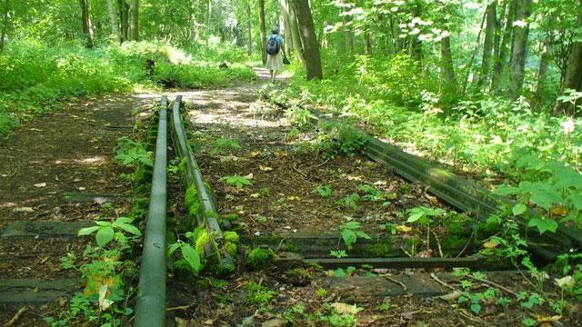 Vestiges de la voie ferrée qui menait au camp de concentration de Buchenwald. [Colin Smith - geo.hlipp.de/wikimédia]