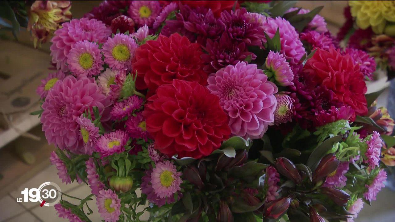Les Suisses s'offrent des fleurs pour égayer cette période difficile [RTS]