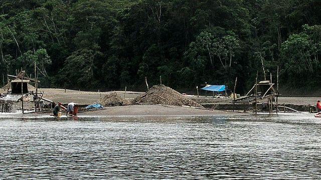 Installations de chercheurs d'or brésiliens le long du Rio Santiago, Condorcanqui, Amazonas, Pérou. [JYB Devot - Wikimédia]
