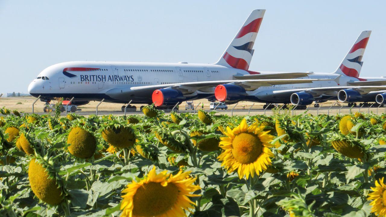 Pour redémarrer, les compagnies aériennes auront sans doute besoin de 70 à 80 milliards de dollars de plus. [Pascal Rossignol - Reuters]