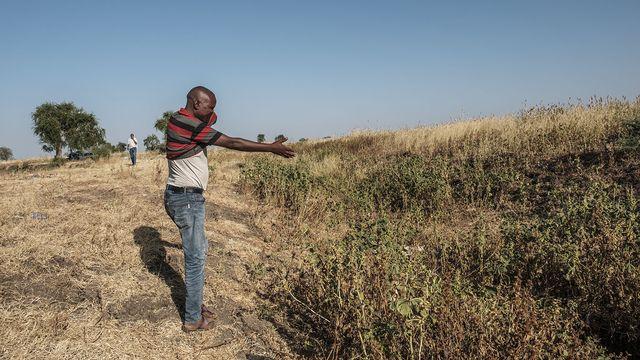 Un homme indique l'endroit où se trouvent les corps de certains des habitants de Mai Kadra tués le 9 novembre 2020. [Eduardo Soteras - AFP]